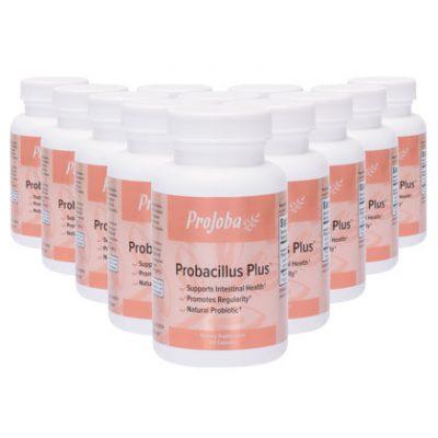 Probacillus Plus™ - 60 capsules (12 Pack)