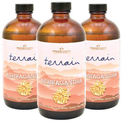 Terrain Ashwagandha (3 Pack)