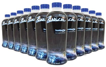 ZRadical 12 Bottle Pack (3 Cases)